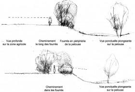 Typologies d'espaces liés aux fourrés